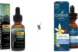 Charlotte's Web vs Curaleaf CBD oil
