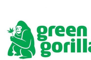 Green Gorilla CBD would we recommend it