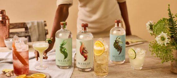Best Seedlip cocktail receipes